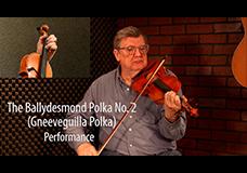 The Ballydesmond Polka No. 2