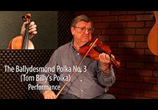 The Ballydesmond Polka No. 3