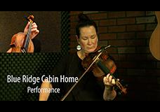 Blue Ridge Cabin Home